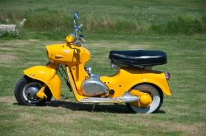 yellow scotter